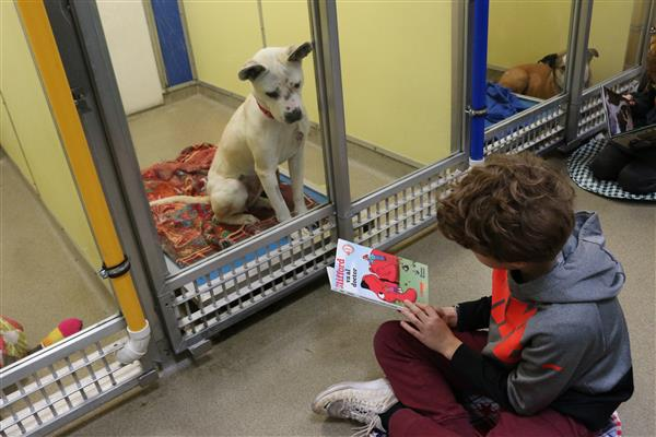 MER Students Read to Shelter Pets